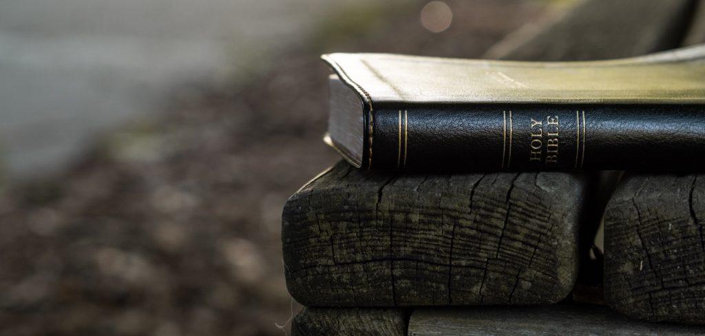 a faithful preacher stands on the authority of God's word